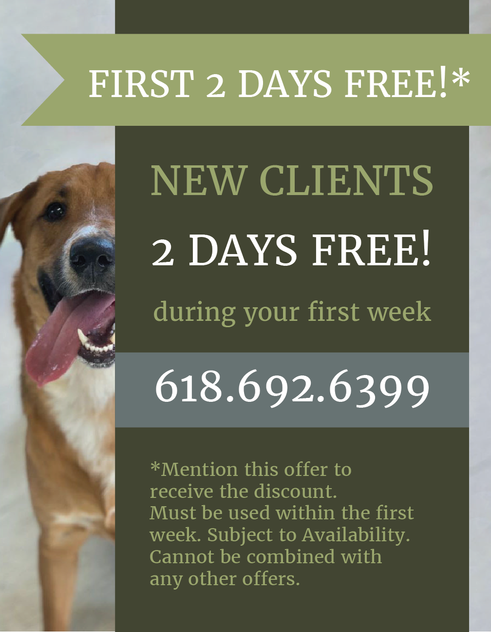 Special Offer from LaBest Pet Resort and Spa