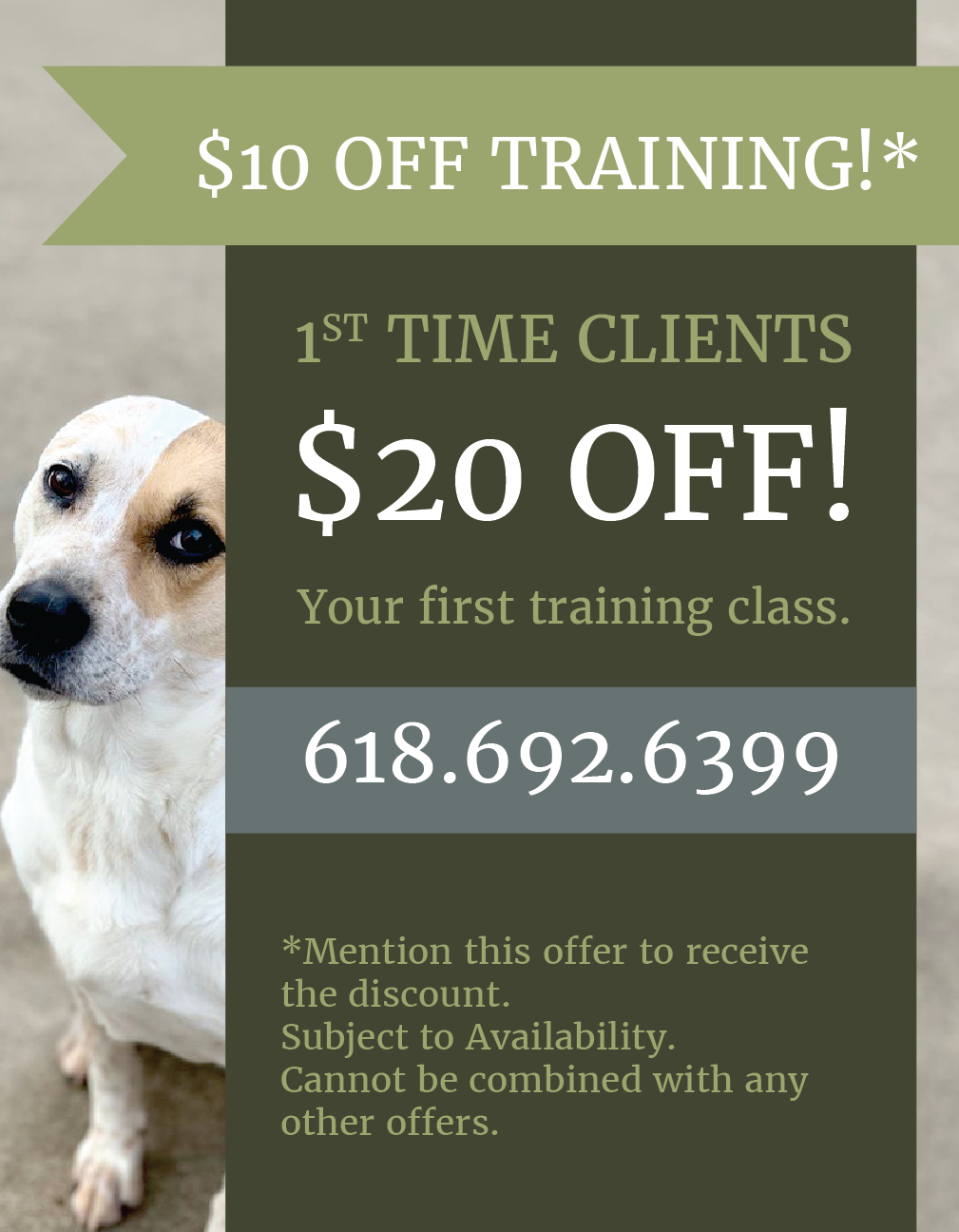 Special Training Offer from LaBest Pet Resort and Spa